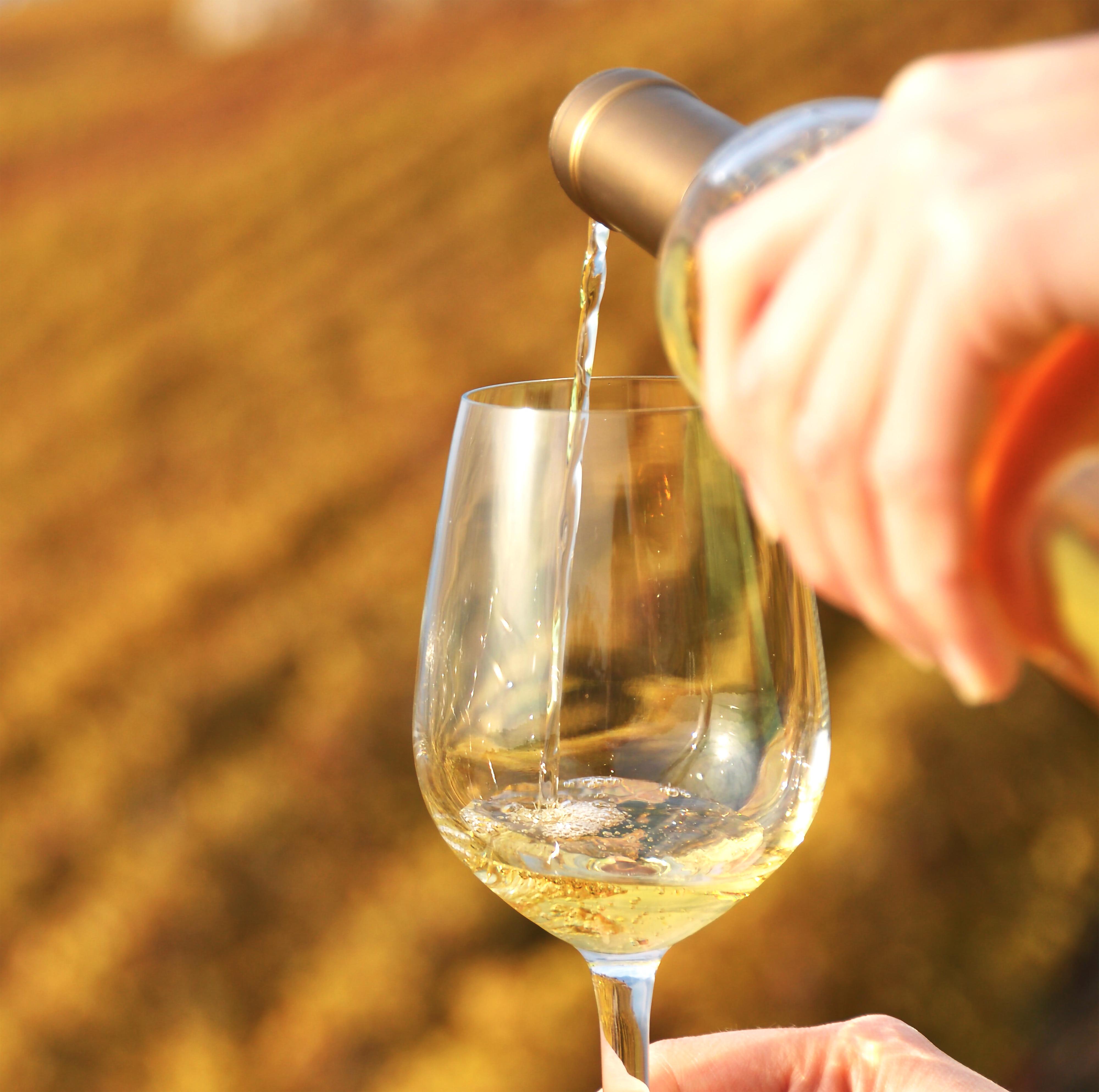 Víno Hibernal
